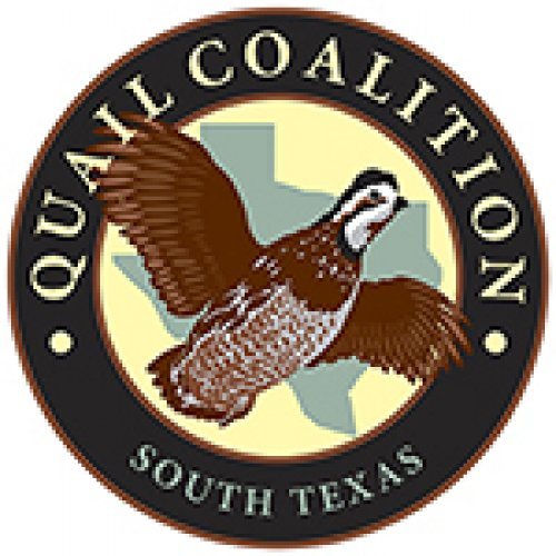 South Texas Quail Coalition