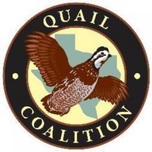 Hill Country Quail Coalition